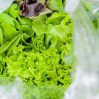 040216_lettuce_bag