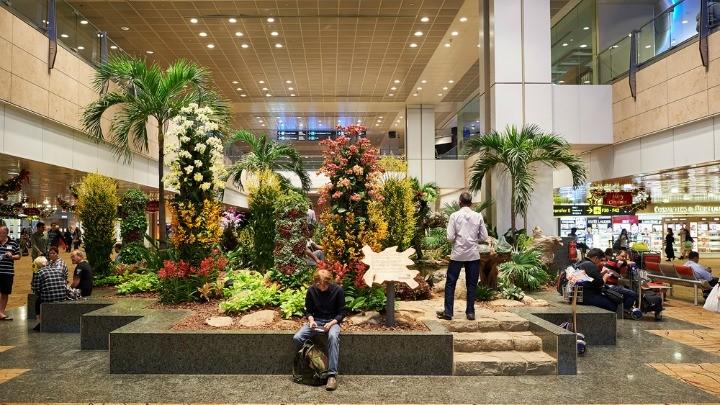 An indoor garden at Singapore's Changi Airport.