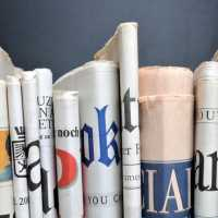 27016_newspapers