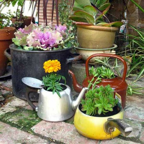 130116_pot_garden