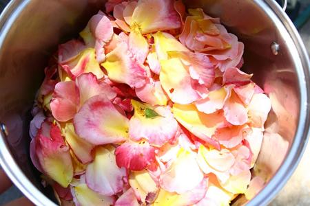 rosewater.freshpetals