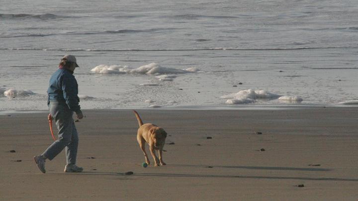 Startsatsixty-person-and-dog