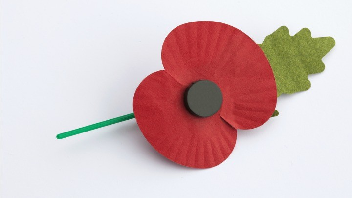Did you know theres a correct way to wear your poppy for did you know theres a correct way to wear your poppy for remembrance day starts at 60 mightylinksfo