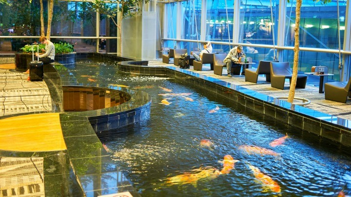 The world s best airports revealed starts at 60 for Fish ponds sydney
