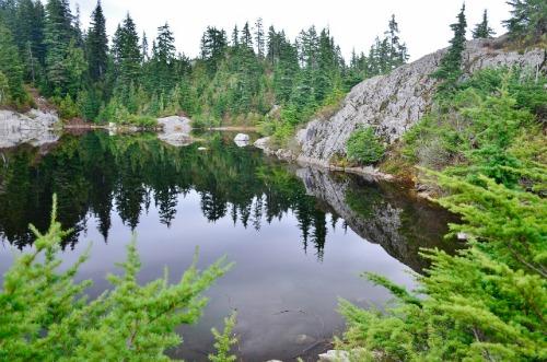 Mount Seymour - Mystery Lake (28) (640x424)