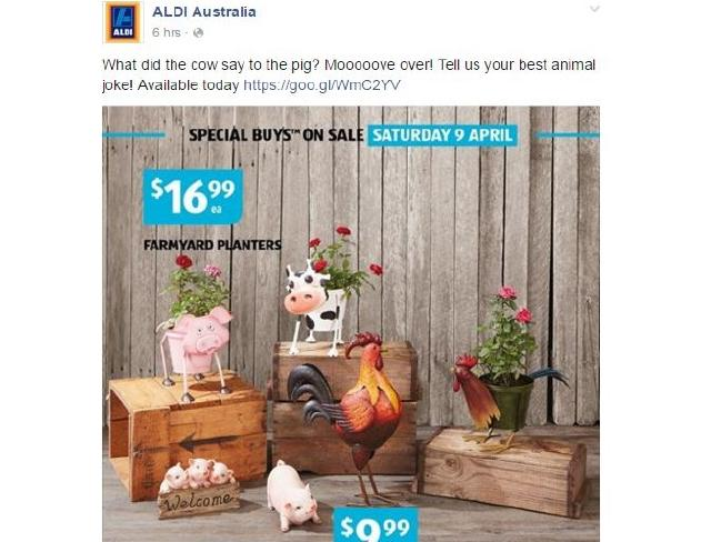 aldi Australia_animals