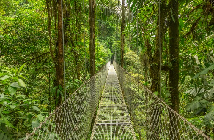 Take a walk on the wild side in Costa Rica.
