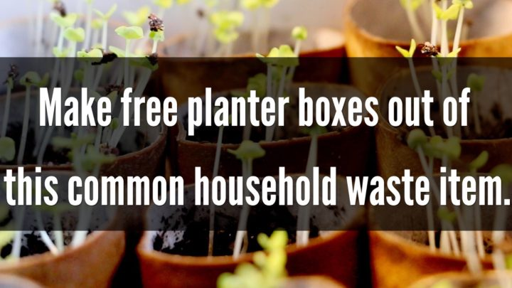 Create free seed planters using this household waste item