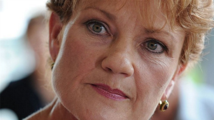 Pauline Hanson says she's just here to create debate