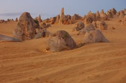 Nambung National Park The Pinnacles (55)SP