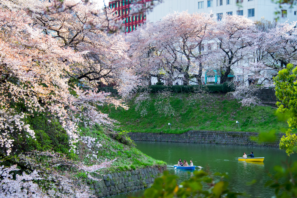 Best parks and gardens in Tokyo for travellers over 60
