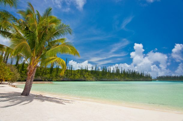 Interesting facts about New Caledonia that will inspire you to go