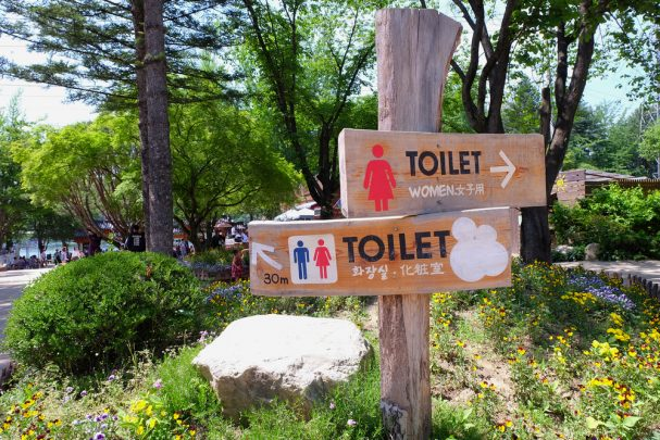 Toilet horror stories from the Travel at 60 community