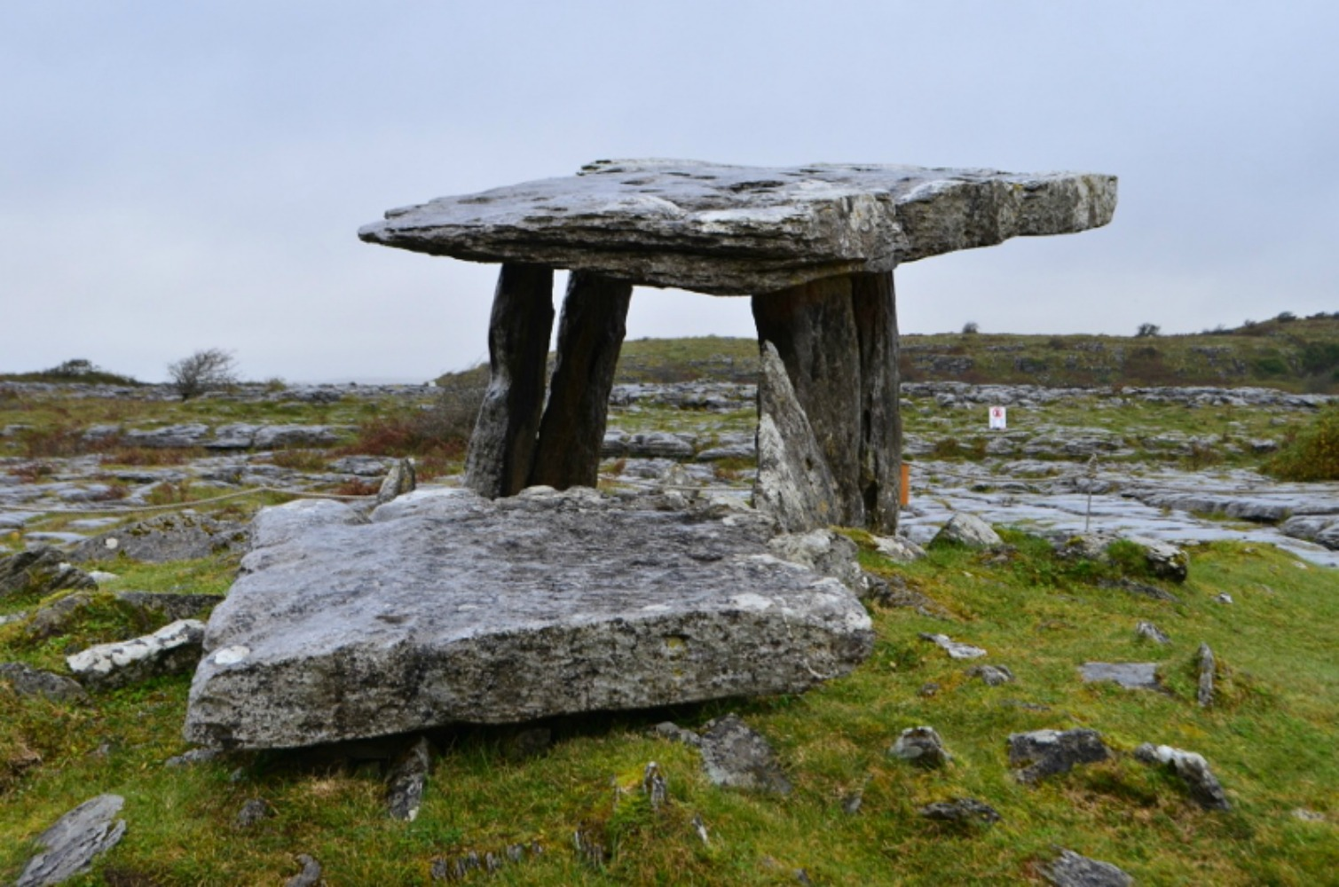 One of the dolmen you will find wandering through the Burren. Photo courtesy Lorraine Parker.
