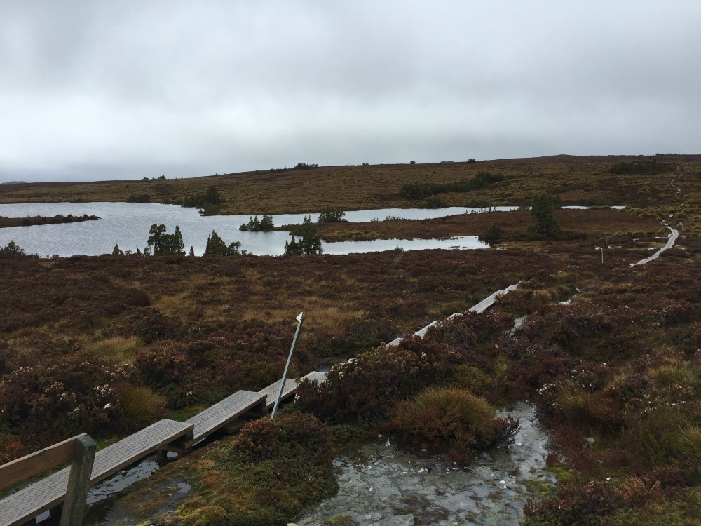 It wasn't all mountains and valleys on the Overland Track.