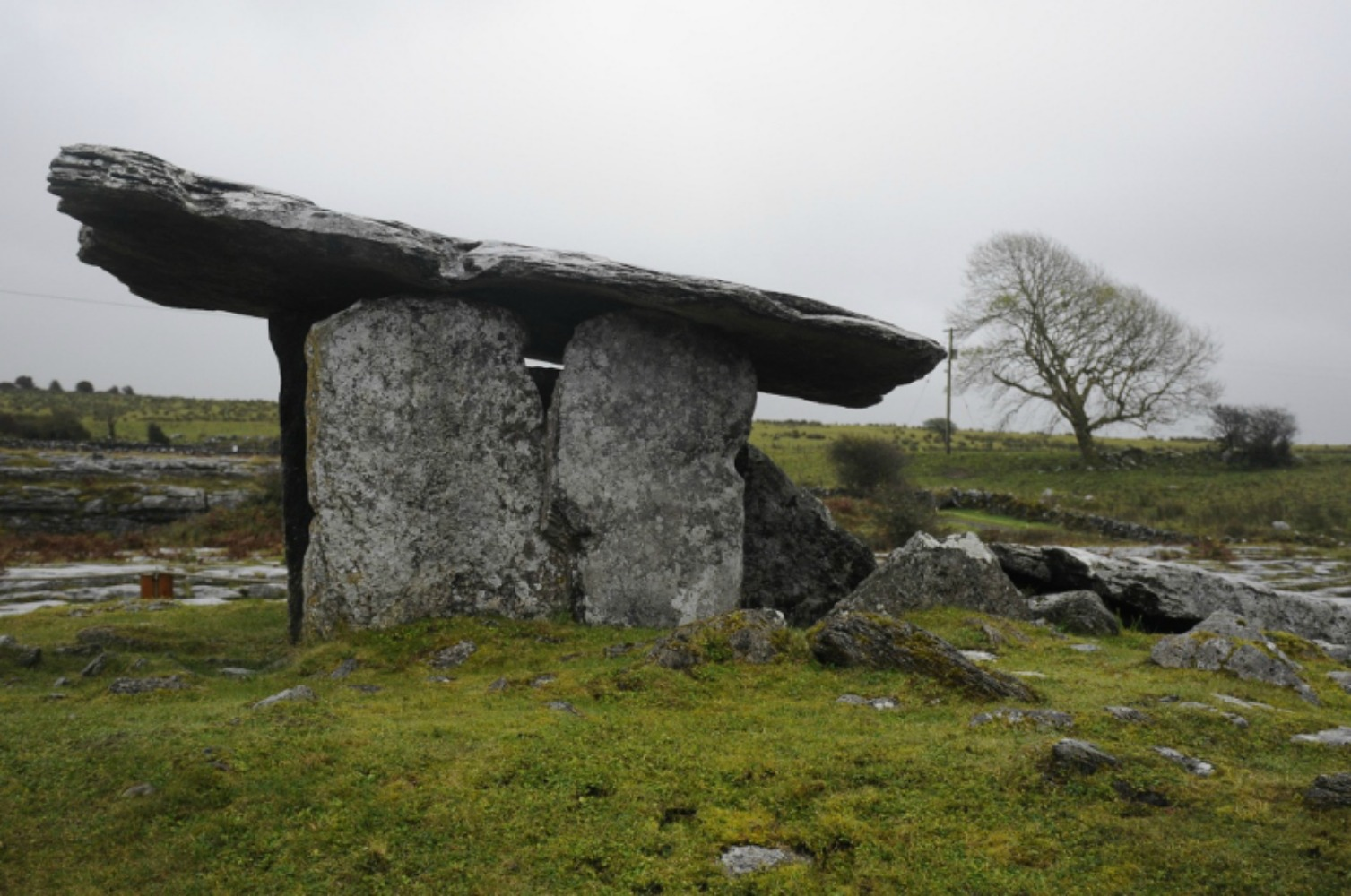 The Poulnabrone is a portal tomb and it's one of 178 known in Ireland. Photo courtesy Ian Smith.