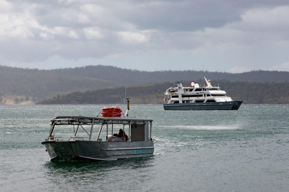 Expedition cruising in Tasmania