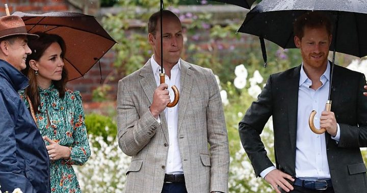 william kate and harry