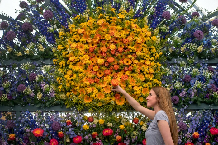 This year's show is packed with bright, vibrant displays