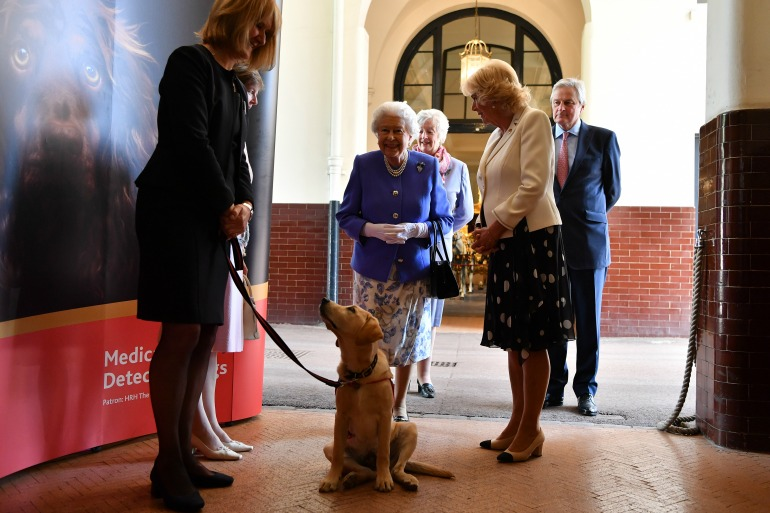 The Queen and Camilla enjoyed a Medical Detection Dogs demonstration at Buckingham Palace. Source: Getty