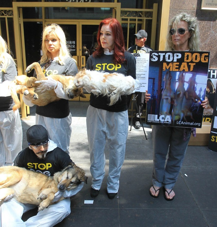 Priscilla Presley was joined by Kim Basinger as they carried dead dogs. Source: Getty.