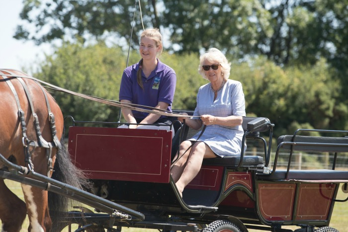 Camilla confidently took to the reins in July. Source: Getty.