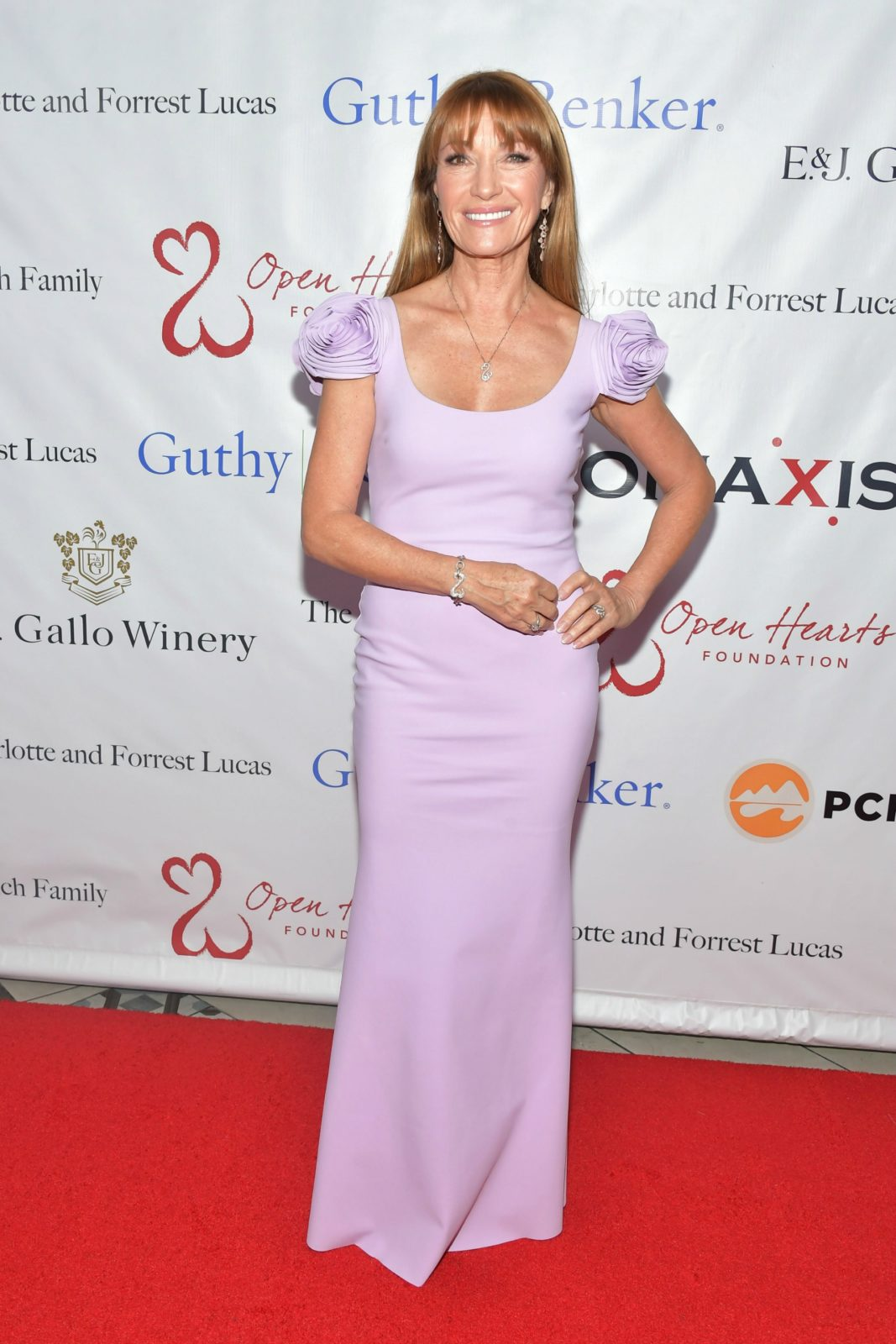 Jane Seymour attends The Open Hearts Foundation's 2019 Open Hearts Gala.